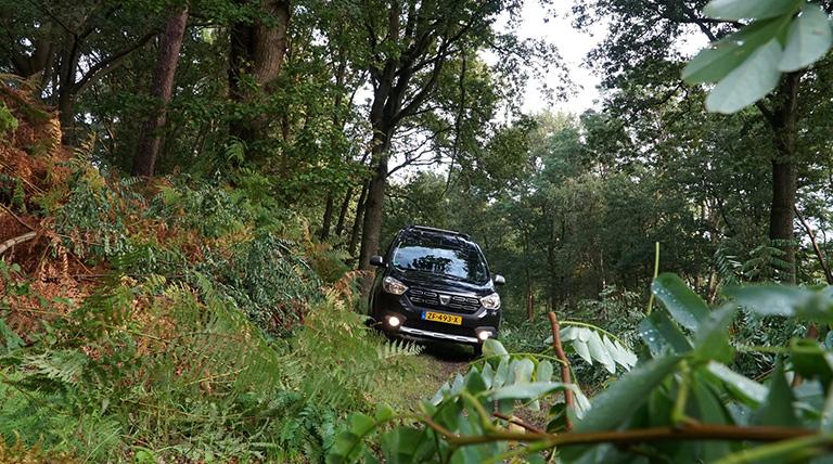 Dacia dokker bos rit
